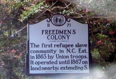 Freedmen's Colony Marker image. Click for full size.