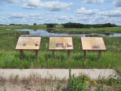 Interpretive Panels image. Click for full size.