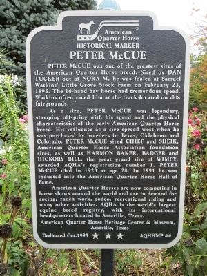 Peter McCue Marker image. Click for full size.