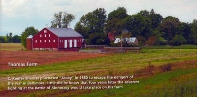 Araby - The Thomas Farm image. Click for full size.
