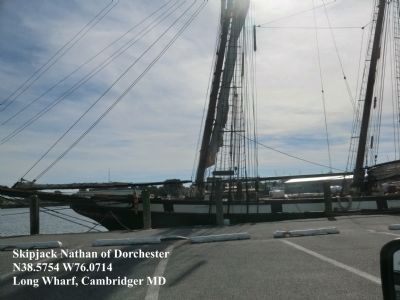 Long Wharf-The Skipjack Nathan of Dorchester image. Click for full size.