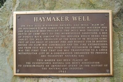 Haymaker Well Marker image. Click for full size.