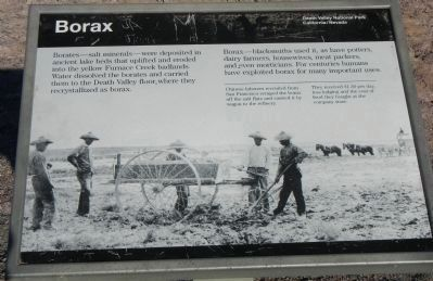 Borax panel image. Click for full size.