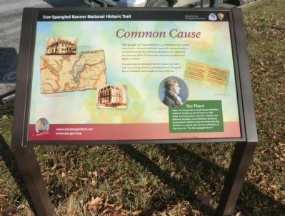 Common Cause Marker image. Click for full size.