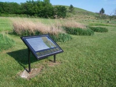 Tallgrass Prairie Plots and Marker image. Click for full size.
