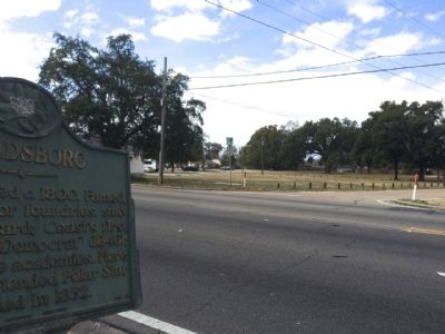 Handsboro Marker looking towards Monet Street. image. Click for full size.