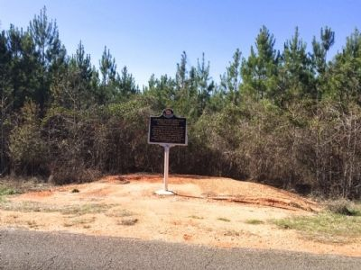 Marker in distance across CR-5. image. Click for full size.
