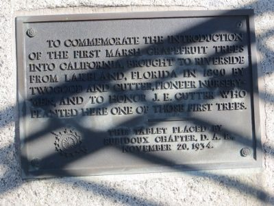 The First Marsh Grapefruit Trees into California Marker image. Click for full size.