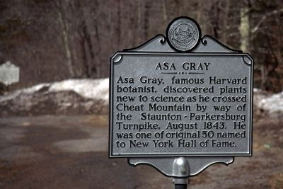 Asa Gray Side of Marker image. Click for full size.