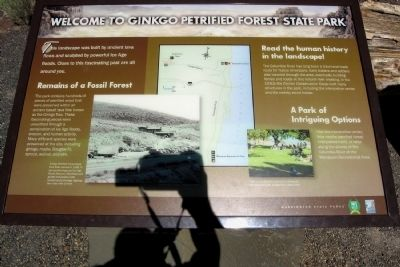 Welcome to Ginkgo Petrified Forest State Park Marker image. Click for full size.