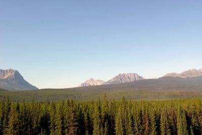 From Left to Right, Storm Mountain, Vermilion Pass,<br>Mount Whymper and Boom Mountain image. Click for full size.