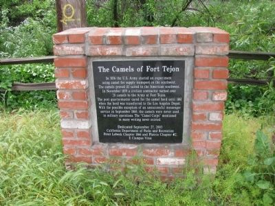 The Camels of Fort Tejon Marker Photo, Click for full size