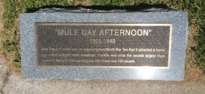 """Mule Day Afternoon"" Marker image. Click for full size."