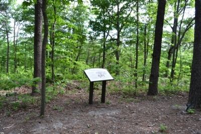 Hoosier Knob Interpretive Trail at Marker #9 image. Click for full size.