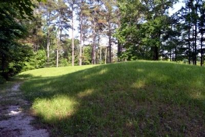 Owl Creek Mound II image. Click for full size.