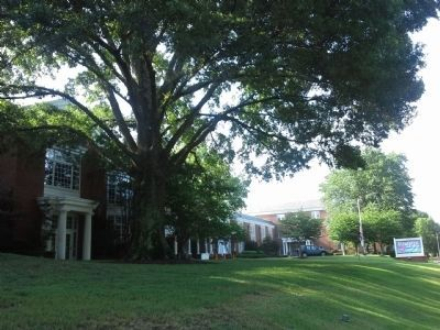 St. Mary's Episcopal School image. Click for full size.