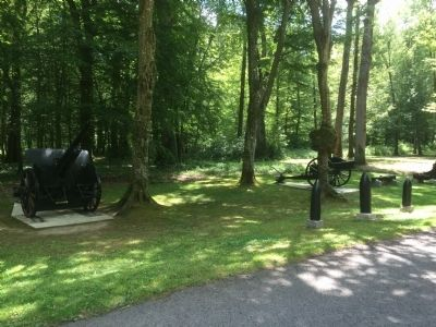 Cannon and Battle Damage in Belleau Wood image. Click for full size.