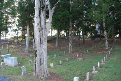 Confederate Section Cassville Cemetery image. Click for full size.