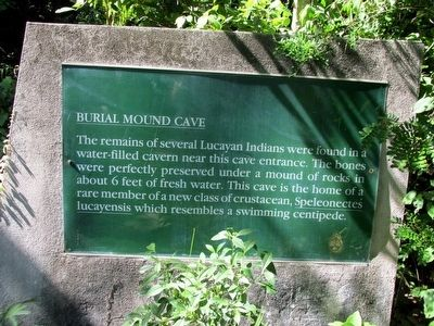 Burial Mound Cave Marker image. Click for full size.