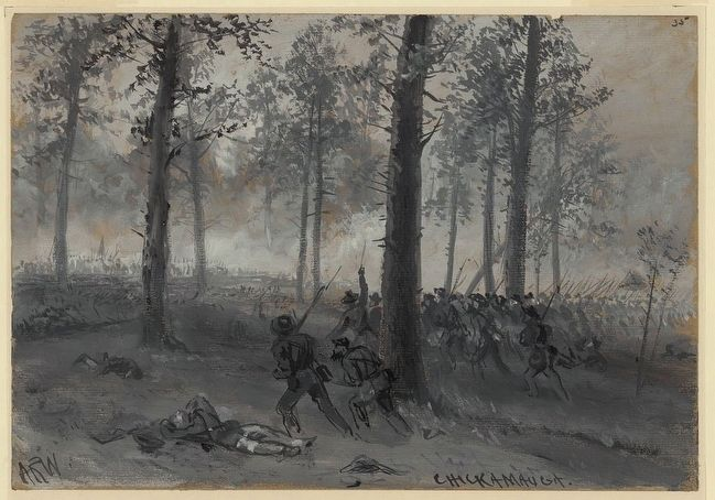 Confederate infantry in the Chickamauga woods. Drawing by wartime artist A.R. Waud. image. Click for full size.