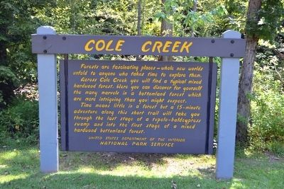 Cole Creek Marker image. Click for full size.