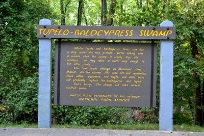 Tupelo–Baldcypress Swamp Marker image. Click for full size.