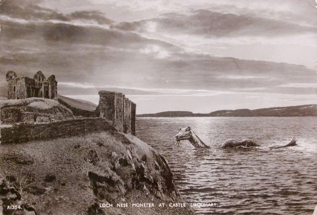 Castle Urquhart and Local Fauna image. Click for full size.
