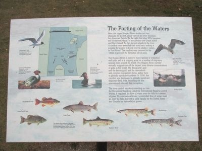 The Parting of the Waters Marker image. Click for full size.