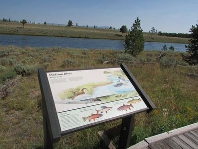 Madison River Marker image. Click for full size.