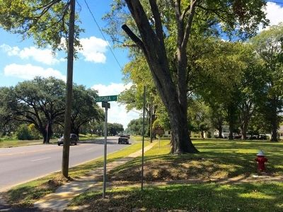 View of marker looking south on Bayou Drive. image. Click for full size.
