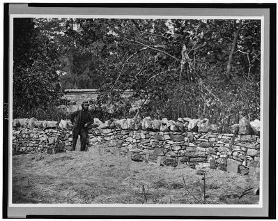 [Soldier standing at graves of Federal soldiers, along stone fence, at Burnside Bridge, Antietam, MD image. Click for full size.