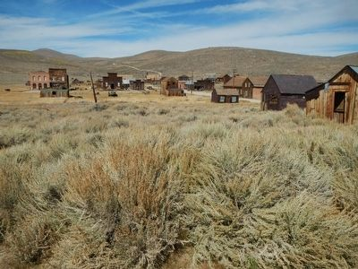 Bodie image. Click for full size.