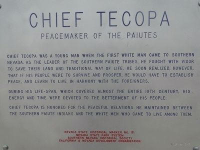 Chief Tecopa Marker image. Click for full size.