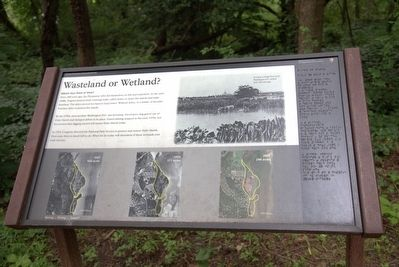 Wasteland or Wetland? Marker image. Click for full size.