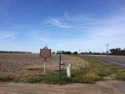 View of marker looking west on LA-581. image. Click for full size.