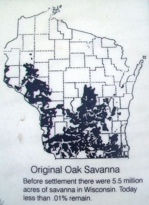 Wisconsin's Oak Savanna Marker Detail image. Click for full size.