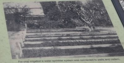 Edison's Water System image. Click for full size.