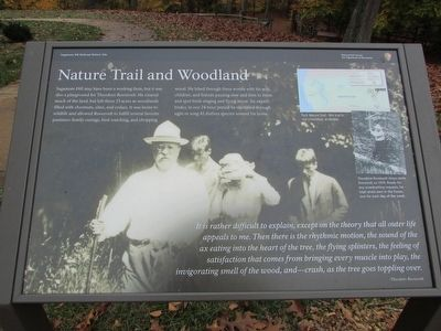Nature Trail and Woodland Marker image. Click for full size.