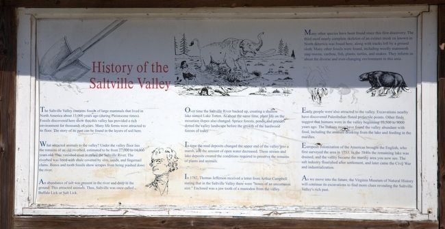 History of Saltville Valley Marker image. Click for full size.