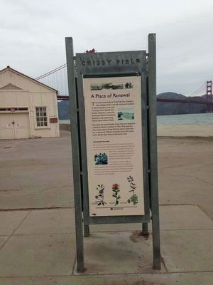 Crissy Field Marker image. Click for full size.