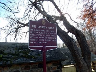 The Diamond Spring Marker image. Click for full size.