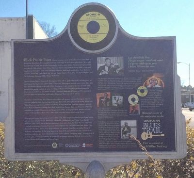 Black Prairie Blues Marker (Rear) image. Click for full size.