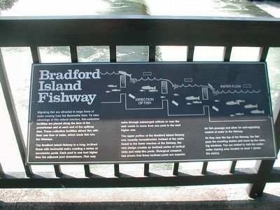 Bradford Island Fishway Marker image. Click for full size.