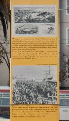 Whaling Out of San Francisco Marker image. Click for full size.