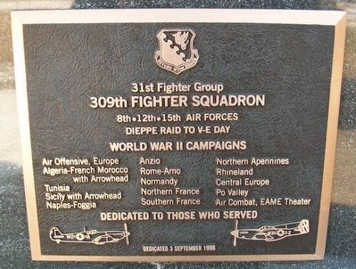 309th Fighter Squadron Marker image. Click for full size.