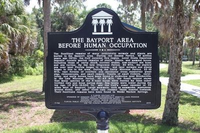 The Bayport Area Before Human Occupation Marker (side 1) image. Click for full size.