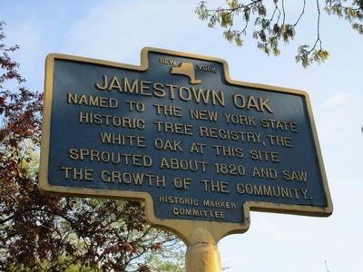 Jamestown Oak Marker image. Click for full size.