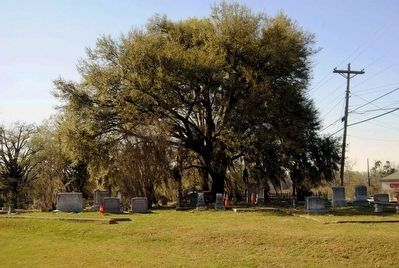 Barnwell Baptist Church Cemetery image. Click for full size.