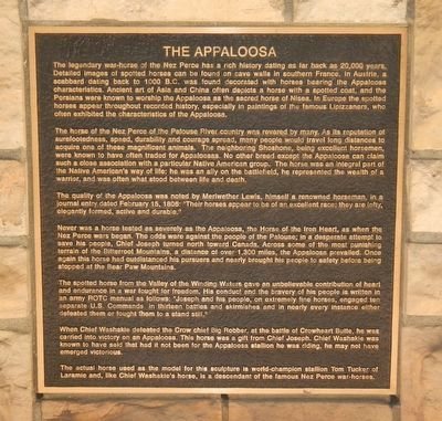 The Appaloosa Marker image. Click for full size.
