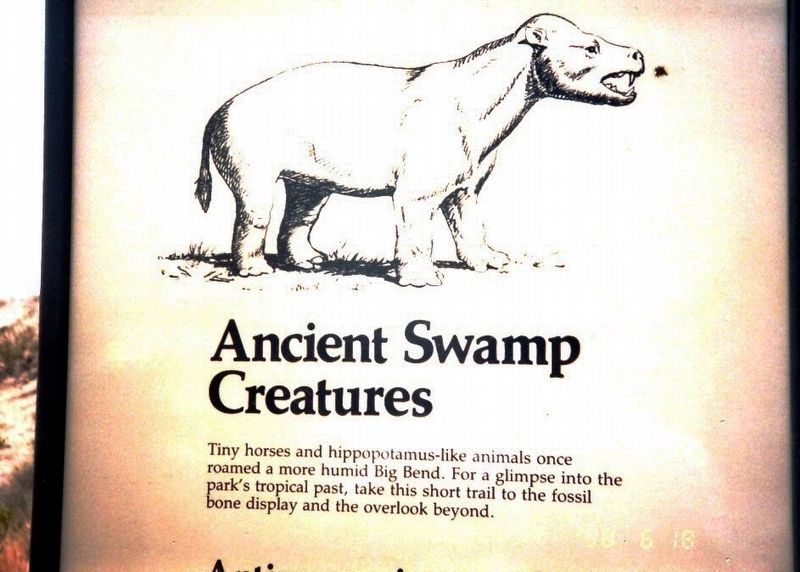 Ancient Swamp Creatures Marker image. Click for full size.